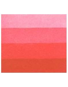 Rojo Rubí serie 6 60 ml
